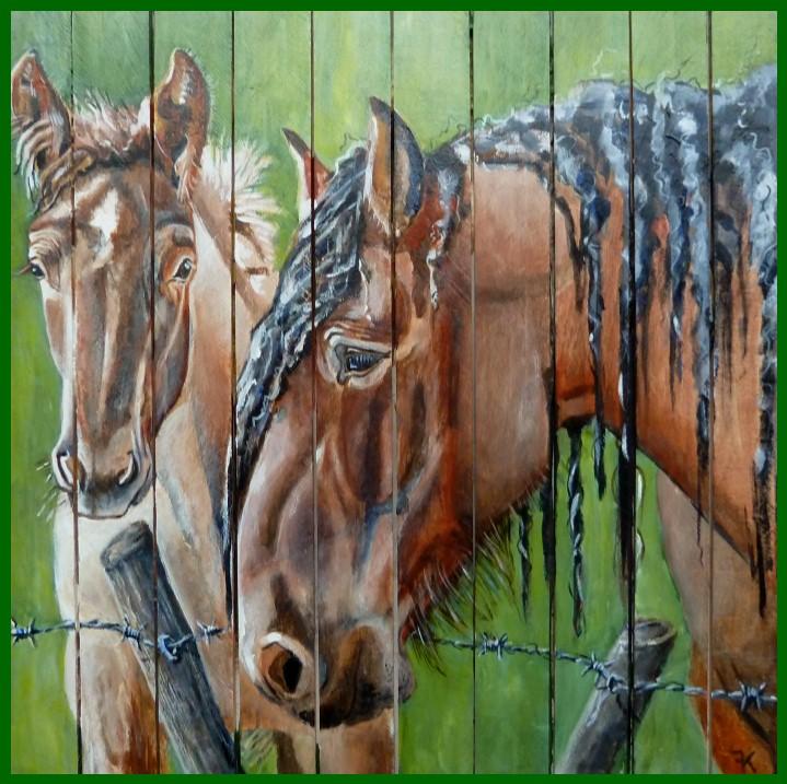 belgisch paard & veulen