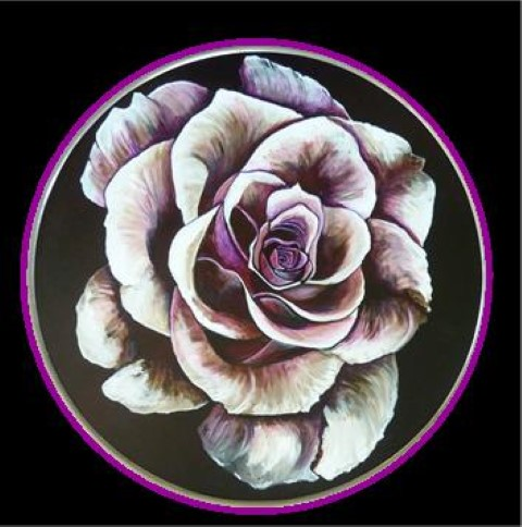 oud roze roos